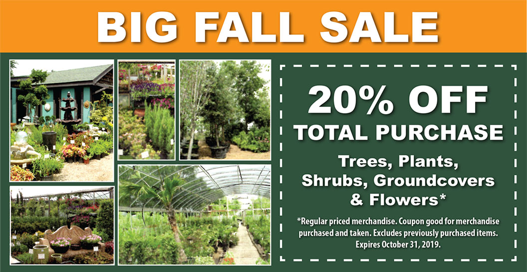 Fall Nursery Sales - Lewisville, Flower Mound